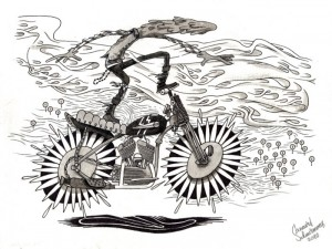 moto surf